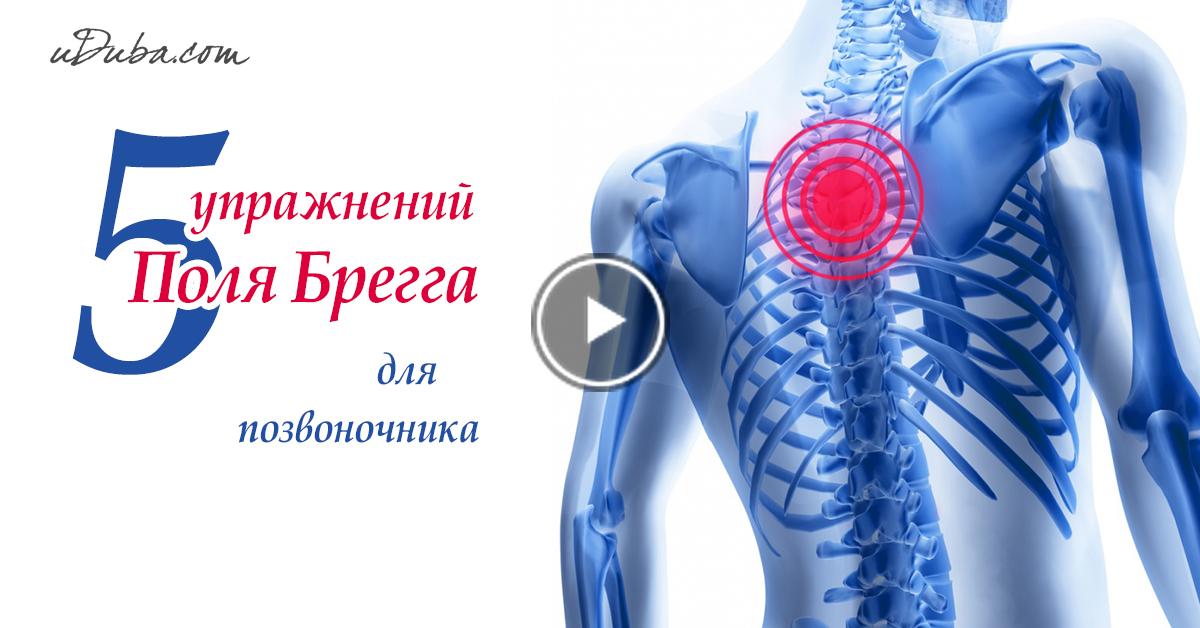 5 упражнений Поля Брэгга для оздоровления позвоночника