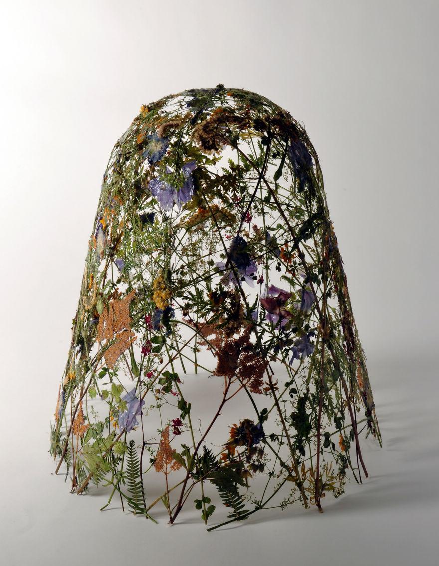 картинки из засушенных цветов: