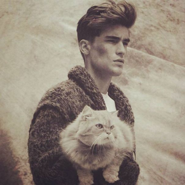 hot-dudes-with-kittens-instagram-421__605