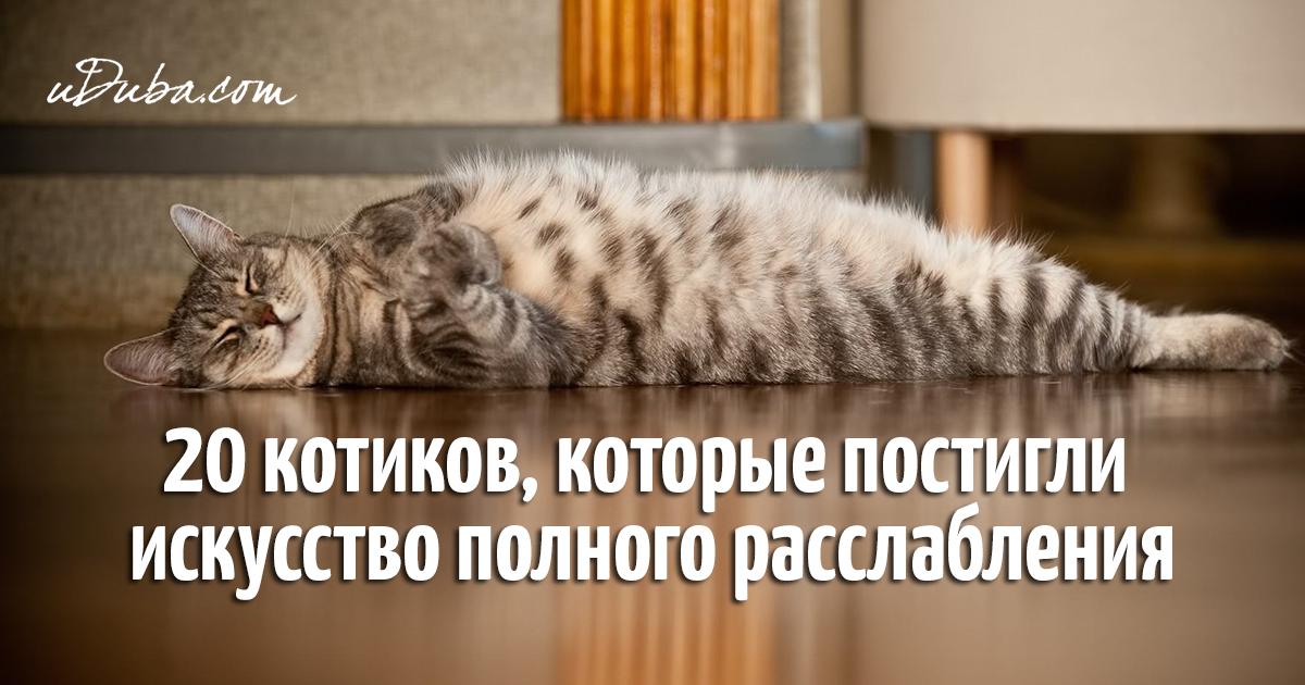 давай расслабимся по полной