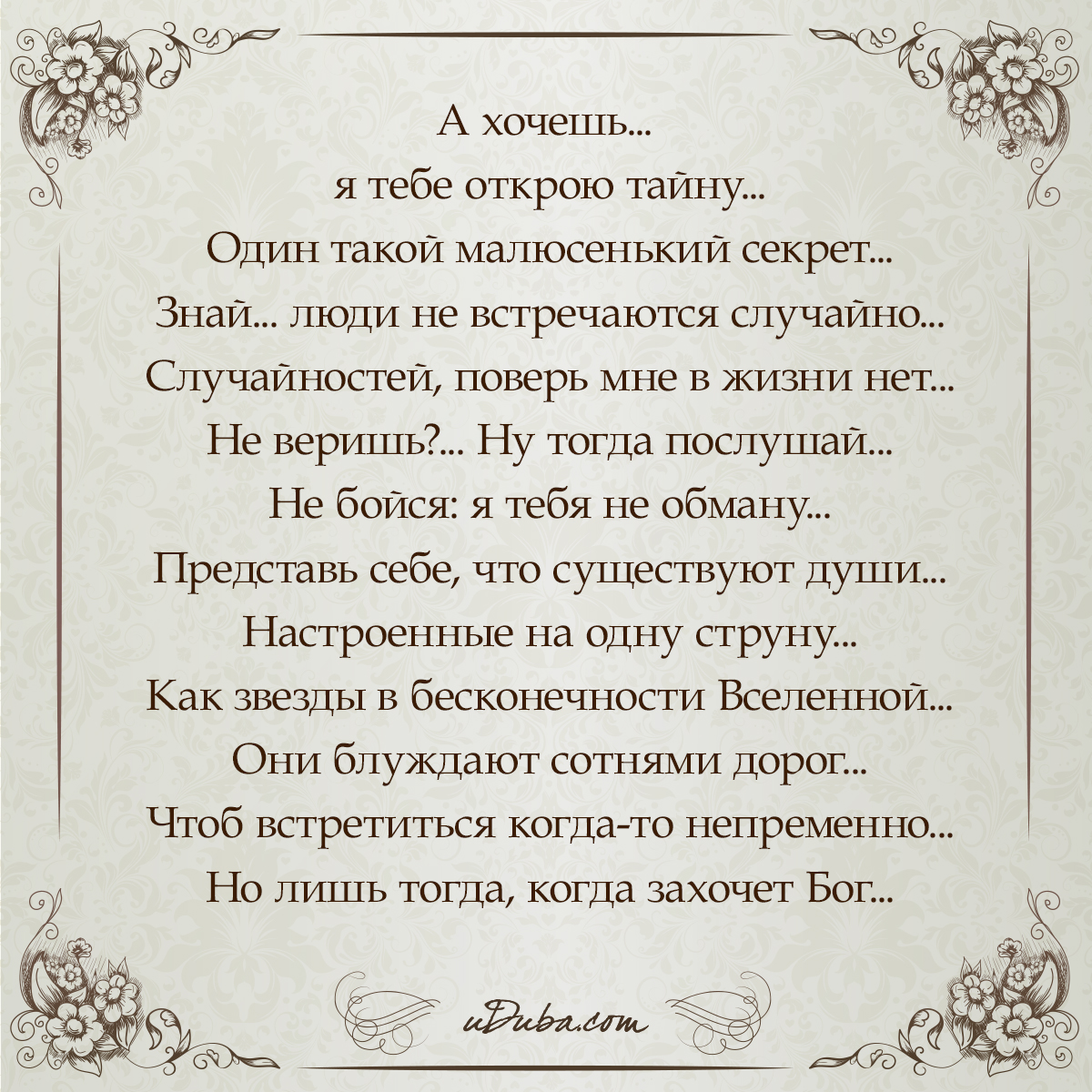 Так много тайн стих