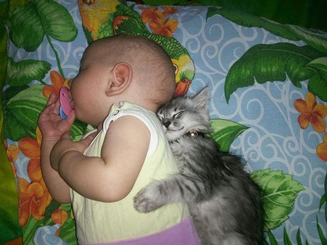 kids-animals-1.jpg