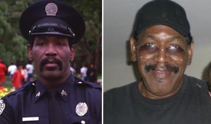 актеры полицейской академии тогда и сейчас фото