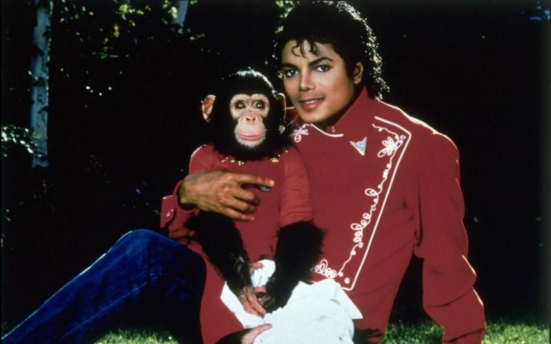 12. Его лучшим другом был шимпанзе интересное, майкл джексон, факты