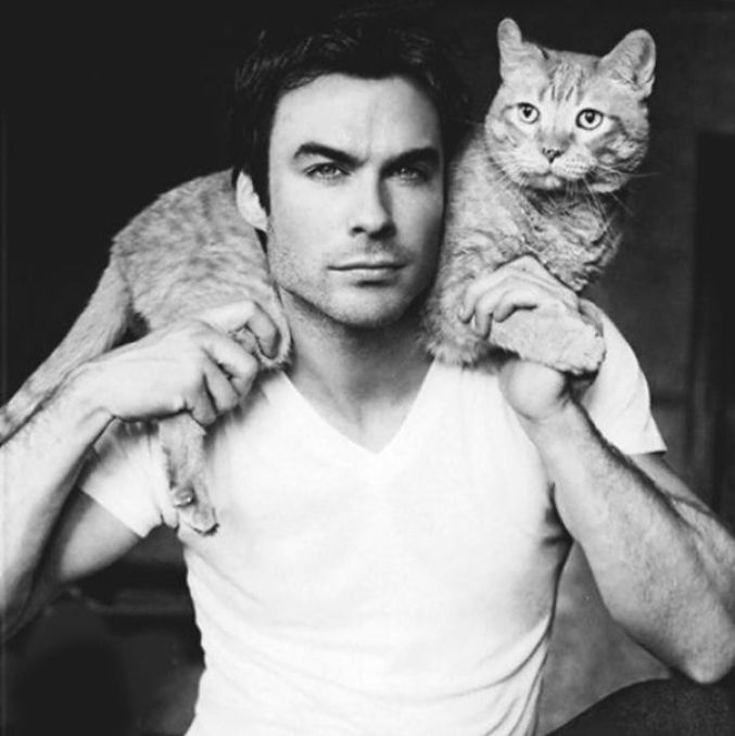 hot-dudes-with-kittens-instagram-441__605