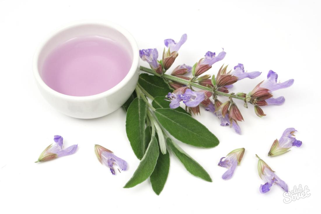как лечить запах изо рта народными средствами