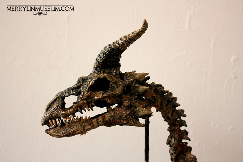 Новорождённый дракон Draco Magnus. интересное, лондон, непознанное, томас мерлин