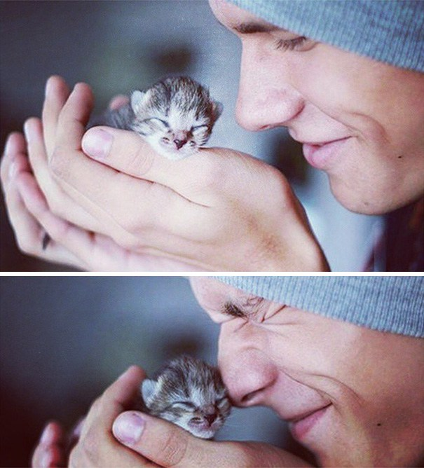 hot-dudes-with-kittens-instagram-391__605