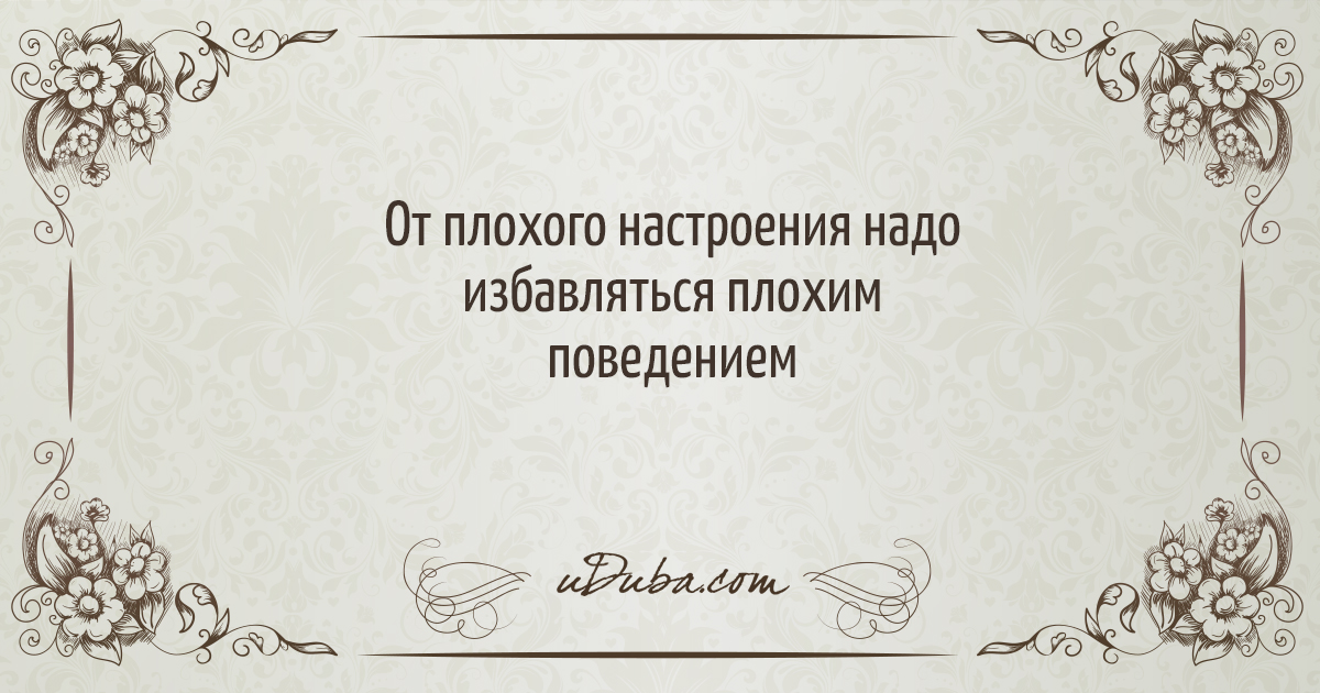 http://uduba.com/user_data/fe3e60095a6a299762a781c4b5e6dae8496352592.jpg